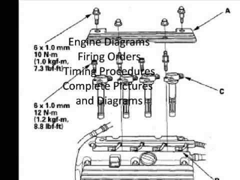 1995 Isuzu Rodeo Belt Diagram