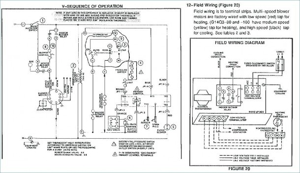 Furnace Blower Motor Wiring Diagram from www.mikrora.com