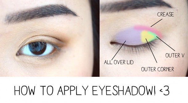 How To Apply Eyeshadow & Eye Anatomy!