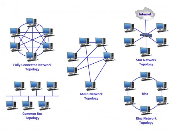 Common Network Topologies Diagram