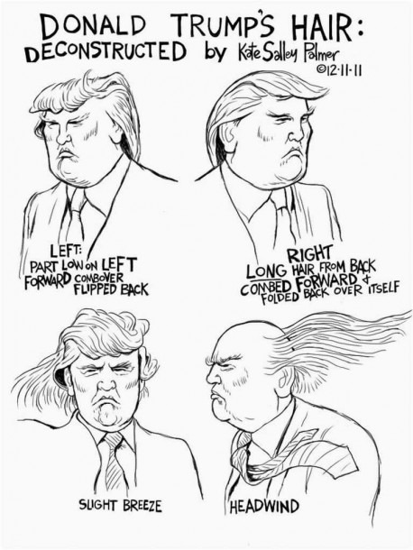 Donald Trump Hair Fresh An Illustrated History Of Donald Trump S