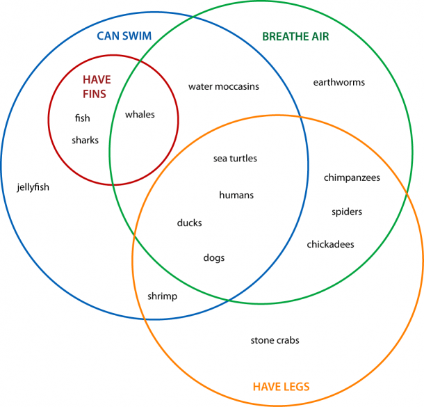 Venn Diagrams  Animals  4