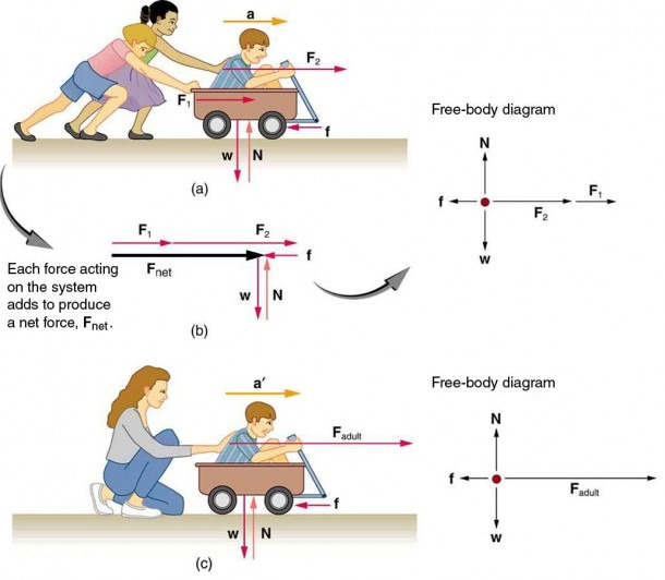This Digram Shows That By The Two People Pushing On The Wagon