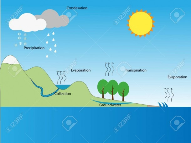Water Cycle Royalty Free Cliparts, Vectors, And Stock Illustration