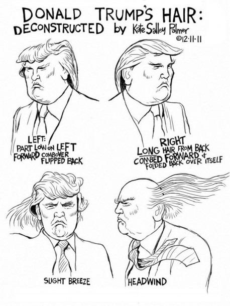 Image Result For Trump Hair Diagram