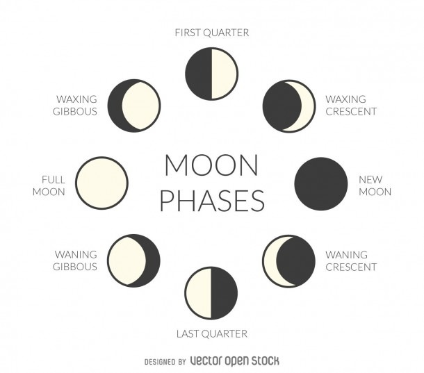 Illustration Featuring The Phases Of The Moon  Design Includes