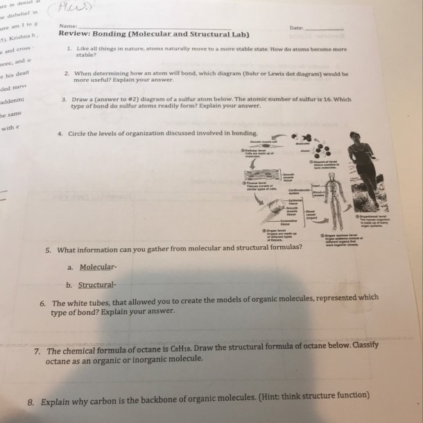 100 Points Plz Help With This Science Worksheet Plz Answer All Of