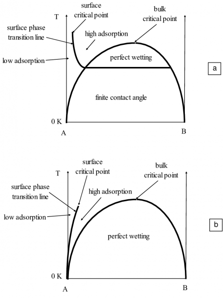 A Monotectic Phase Diagram With A Surface Phase Transition Line