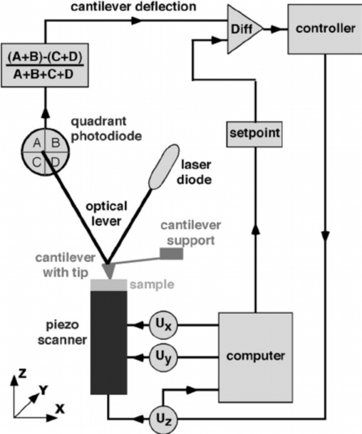 A Schematic Diagram Of An Atomic Force Microscope