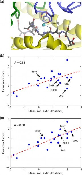 Accounting For Buried Structural Water Improves Predictions  (a) A