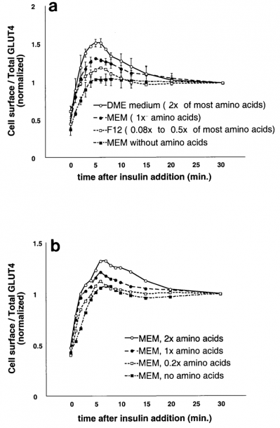 Amino Acid Concentrations Regulate The Amount Of Rapidly