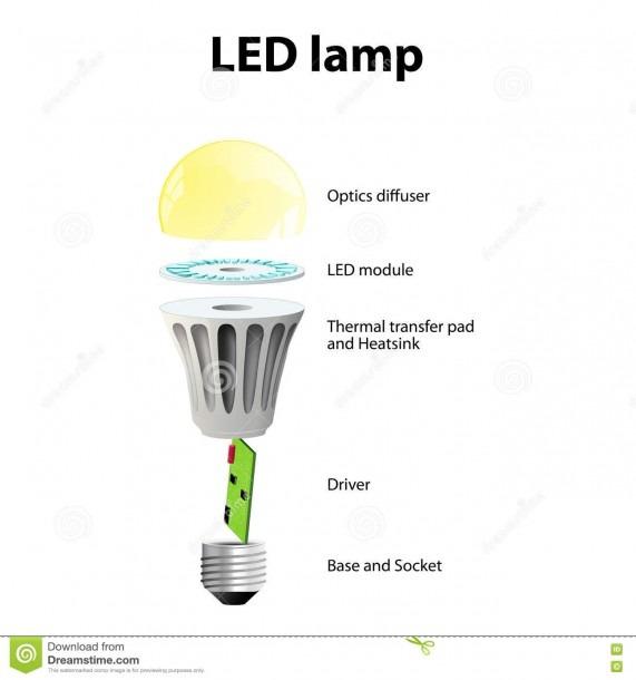 Basic Components Of Led LightBulbs Stock Vector