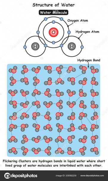 Structure Water Infographic Diagram Showing Molecule Water Ionic