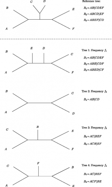 Example Tree Set For Ic Calculations