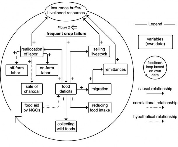 Fig  3  A Causal Loop Diagram Showing The Insurance Buffer