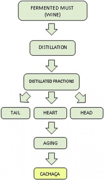 2 Flowchart Of The Distillation Process Of Cachaça