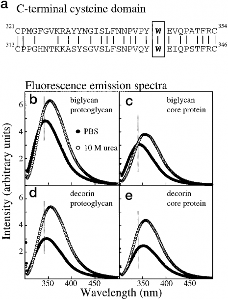 Fluorescence Emission Spectra Of Recombinant Glycoforms  A, Amino