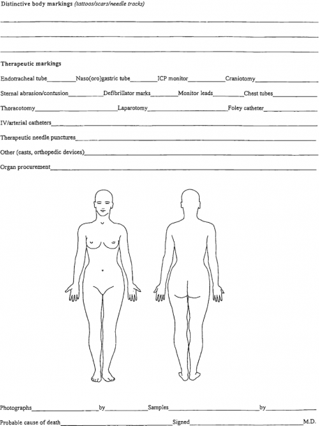 Forensic Body Chart  Courtesy Of King County Medical Examiner's