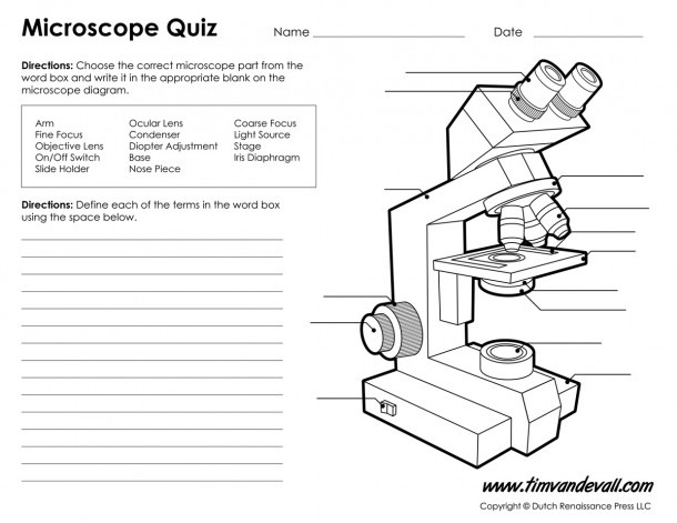 Microscope Diagram Labeled, Unlabeled And Blank