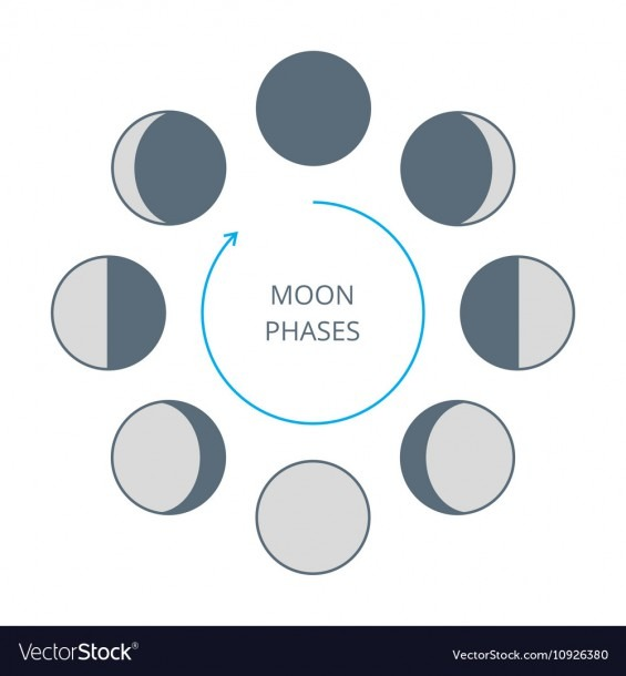 Moon Phases Icons Royalty Free Vector Image