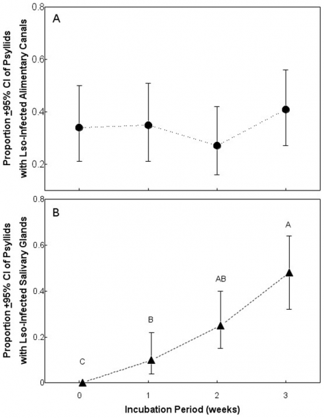 Proportion Of Psyllids With An Infected Alimentary Canal (a) Or