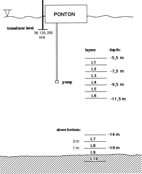 Schematic Configurations Of Acoustic Measurements On Suspended
