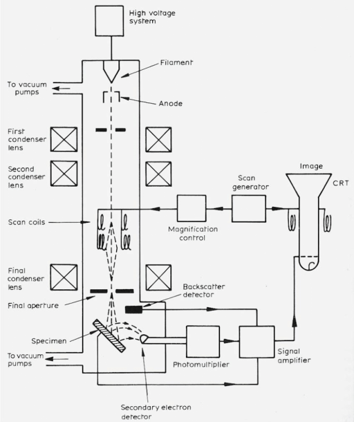 22  Schematic Drawing Of A Scanning Electron Microscope (sem
