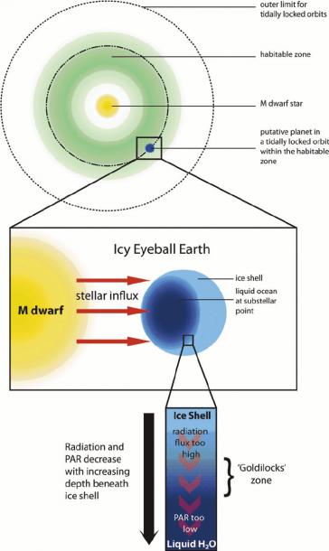 Schematic Of Idealized Icy Eyeball Earth  Top  Putative M Dwarf