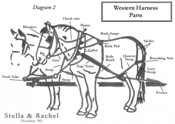 Work Horse Harness Diagram