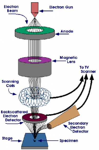 2  Shows The Basic Block Diagram Of A Scanning Electron Microscope