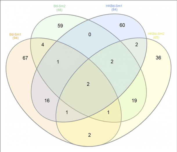 Venn Diagram Depicting Shared Significantly Expressed Degs From