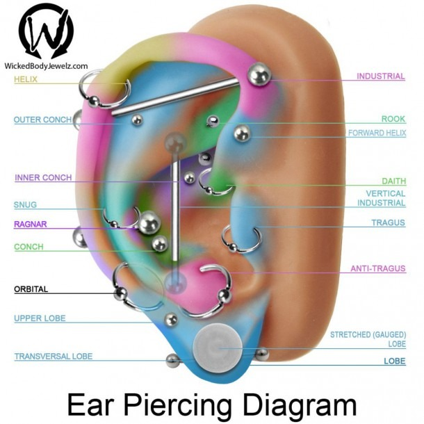 Tragus, Antitragus, Conch, Inner, Upper, Outer, Daith, Forward
