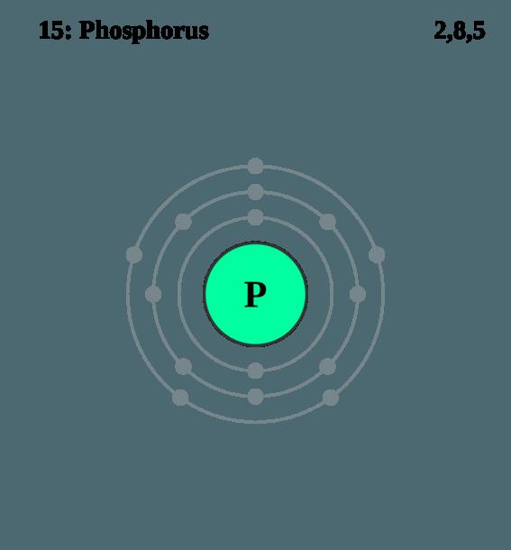 Diagram For Phosphorus