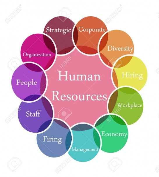 Color Diagram Illustration Of Human Resources Stock Photo, Picture