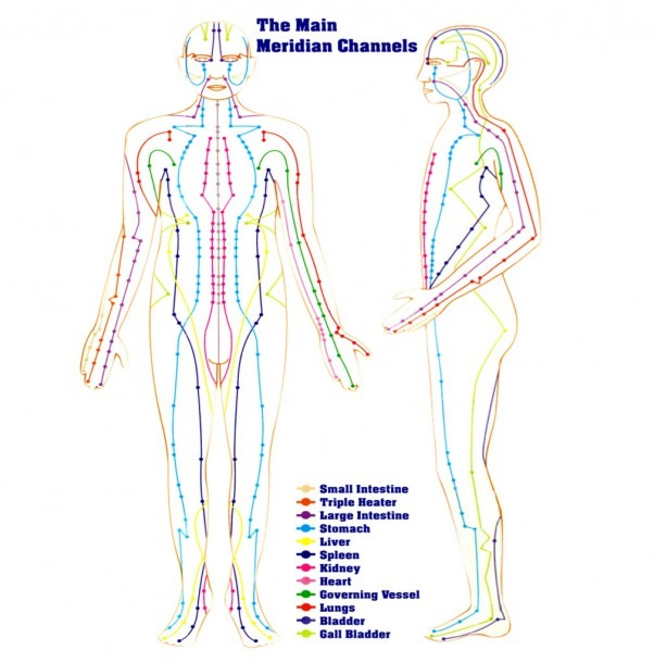 The 12 Meridians, The Pathway Of Chi Energy Flow – Viscambio
