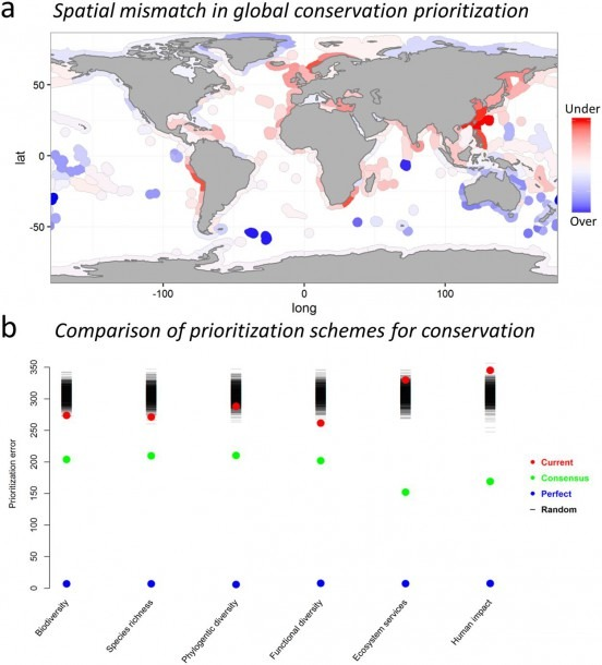A Global Mismatch In The Protection Of Multiple Marine