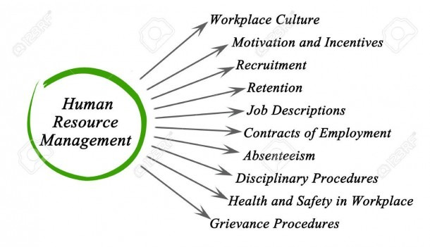 Diagram Of Human Resource Management Stock Photo, Picture And