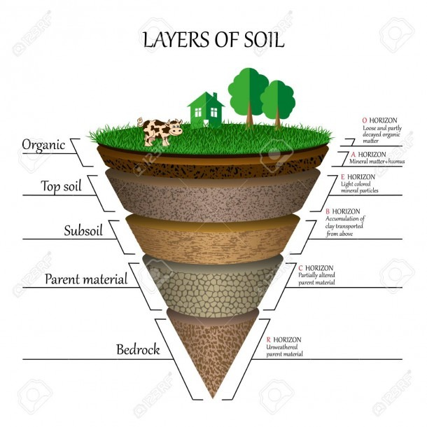 Layers Of Soil Diagram Images Royalty Free Cliparts, Vectors, And
