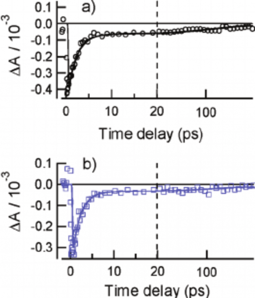 A) Transient Absorption Signal From A Cis À Syn Thymine Dimer