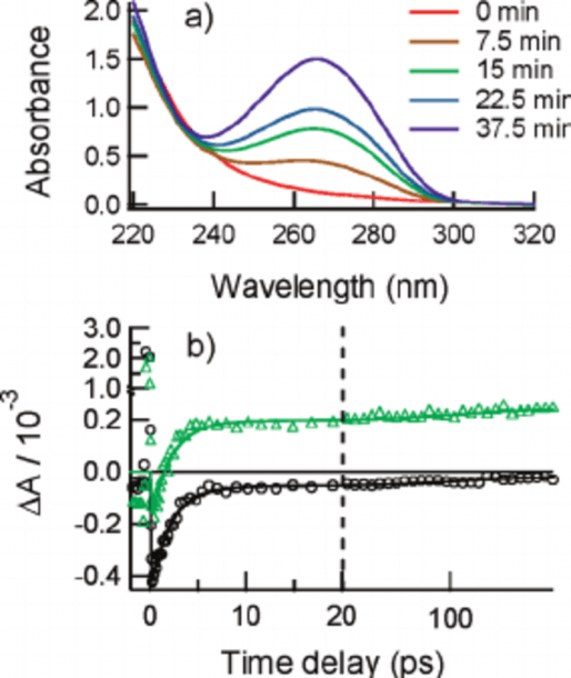 A) Uv Vis Spectra Of The Cis À Syn Thymine Dimer Solution After