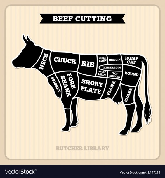 Beef Cow Cuts Butcher Diagram Royalty Free Vector Image