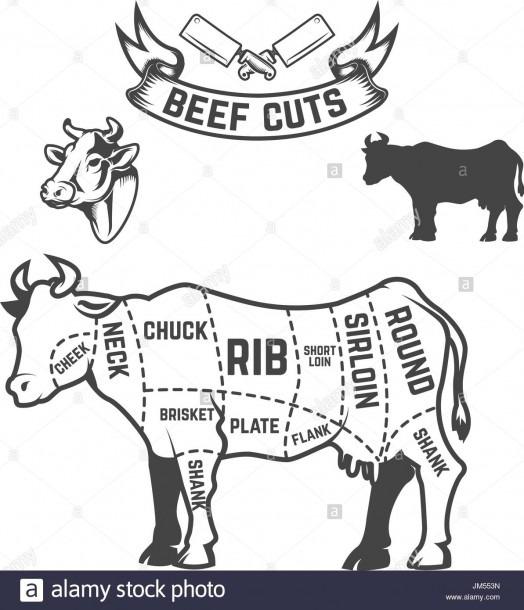 Diagram Of Cow