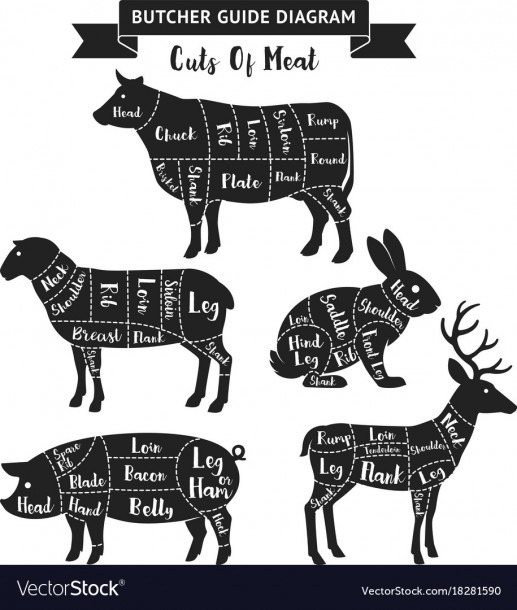 Cuts Of Meat Diagram