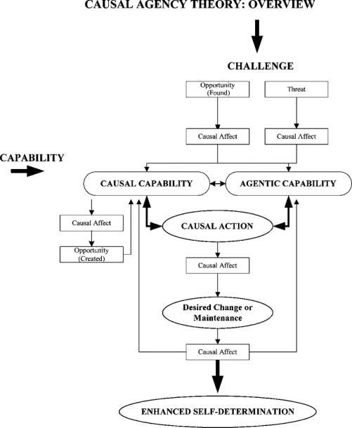 Causal Agency Theory  Overview (from Wehmeyer And Mithaug, 2002