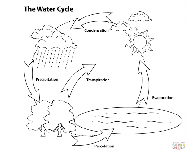 Coloring Pages ~ Remarkable Water Cycle Coloring Page Image Ideas