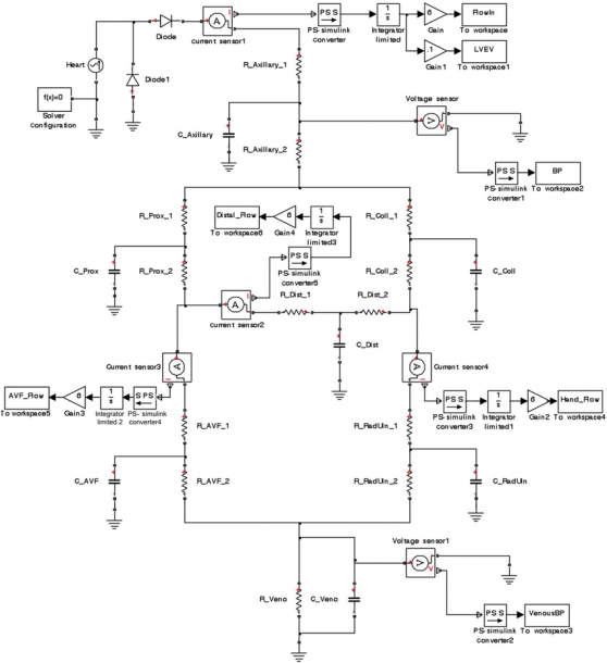 Complete Circuit Diagram Of The Upper Extremity Arteriovenous