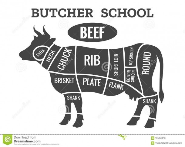 Cow Butcher Diagram Stock Vector  Illustration Of Meat