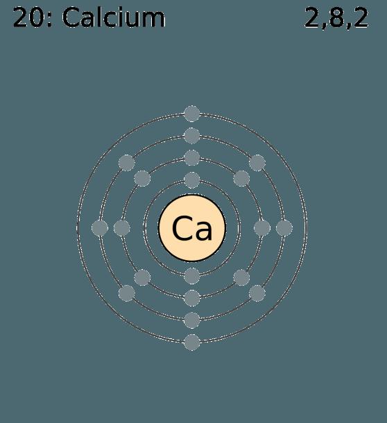 Calcium On Twitter   Calcium Bohr Model…