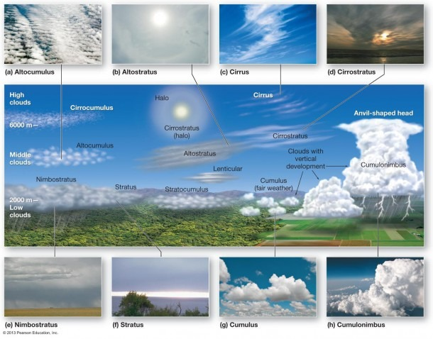 Roll Cloud Diagram