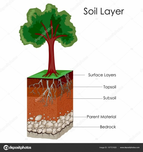 Education Chart Of Science For Layers Of Soil Diagram — Stock